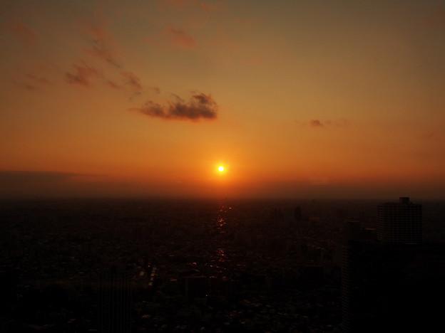 都庁からの夕日