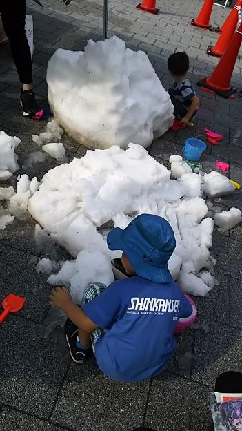 Photos: 雪!!!!!