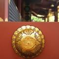 Photos: 根津神社