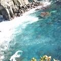 Photos: 城ヶ崎海岸3 海の透明度