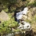 Photos: 川が海へ 城ヶ崎海岸4