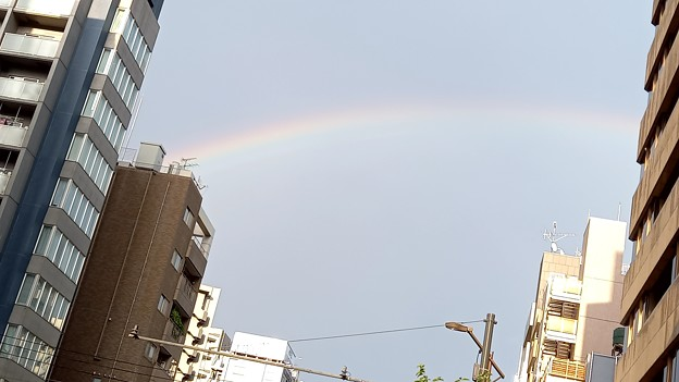 Photos: 虹