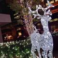 Photos: 電飾☆大東区