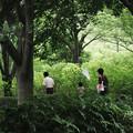 写真: 公園にてーその I