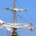 帆船海王丸セイルドリル