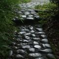 梅雨空の石畳