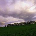 写真: マイルドセブンの丘