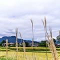 Photos: 沼田市