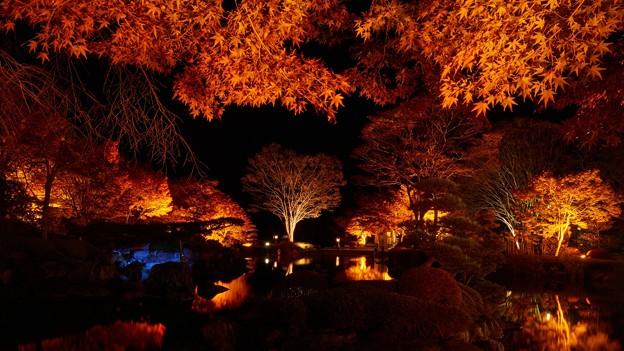 桜山公園-5