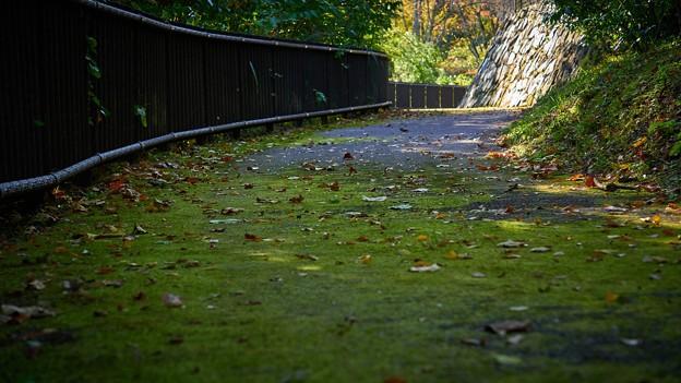 Photos: 城峰公園-1