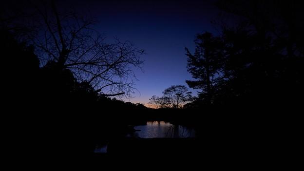 Photos: 桜山公園-7
