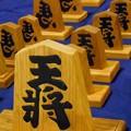 Photos: 手作りの王将駒・縁起のいい左馬♪