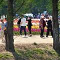 Photos: 老若男女の集う@陽気な日曜日@チューリップ祭