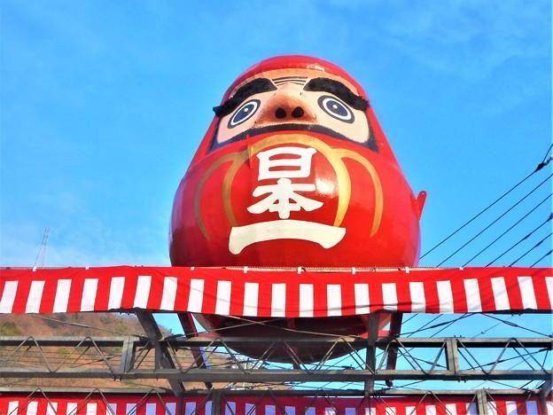 日本一の大だるま@備後路に春を告げる@三原だるま市
