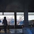 Photos: さつき亭の春@千光寺山