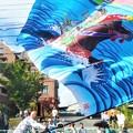 応援団旗はためく@田辺島福永染@ローズパレード@福山ばら祭
