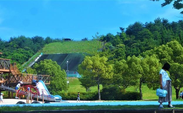 写真: ウッディーな冒険の森は楽し@びんご運動公園