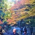 Photos: 佛通寺の紅葉
