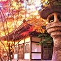 Photos: 晩秋の輪蔵(経蔵)@古刹佛通寺