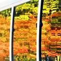 Photos: 車窓の紅葉@佛通寺