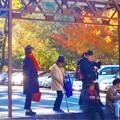 Photos: 山深い谷あいのバス停「佛通寺」@秋たけなわ