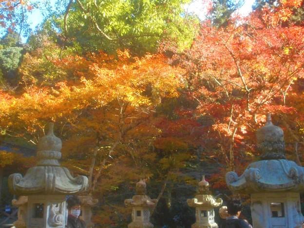 佛通寺の紅葉@石灯籠のある風景