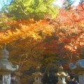 Photos: 佛通寺の紅葉@石灯籠のある風景
