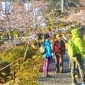 Photos: 外人観光客も最近多い@千光寺山