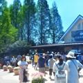 Photos: チューリップ祭はピークを迎えていました@広島・世羅高原農場