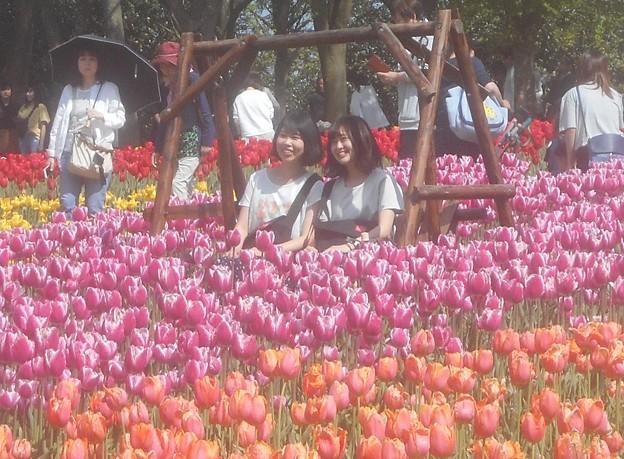 とても人気の花ブランコで花スマイル@チューリップ祭2019