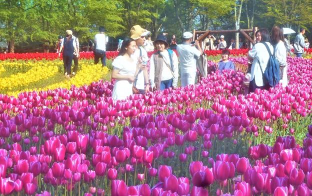 花ブランコで記念写真@チューリップ祭@世羅高原