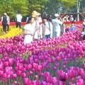 Photos: 花ブランコで記念写真@チューリップ祭@世羅高原