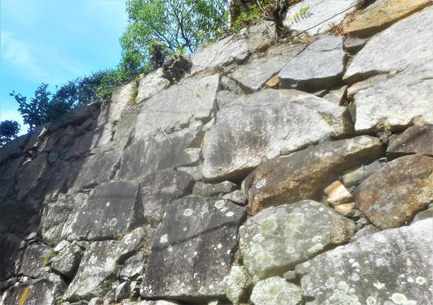 見上げれば青空@築城450年の浮城(三原城)の石垣