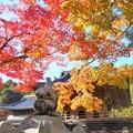 Photos: 仏殿と鐘楼の秋@大本山 佛通寺