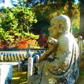Photos: 羅漢庭の秋@古刹佛通寺