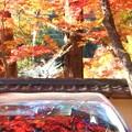 Photos: 紅く染まる秋@佛通寺参道周辺