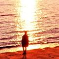 Photos: 渚の冬の旅人(または恋人)@夕陽の海
