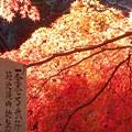 御調八幡宮の秋@久井町