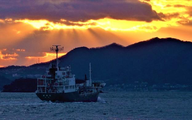 Photos: クジラ島の光芒@新春の瀬戸内海