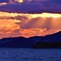 カモメ飛ぶ 早春の海と光芒