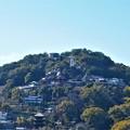 Photos: 春の大宝山千光寺と天寧寺三重塔遠景