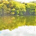 Photos: 新緑の候1
