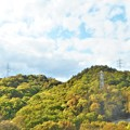 Photos: 新緑の候2