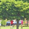 Photos: 初夏の芝生公園の午後@梅雨の晴れ間
