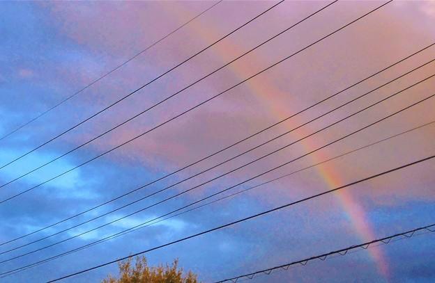 Photos: 夕暮れの虹@東の空に