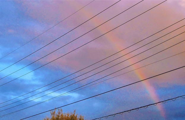 夕暮れの虹@東の空に