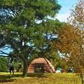 秋の日曜日@テントを張って遊ぶ