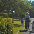 Photos: 土曜日は公園で遊ぶ@ヤング・ファミリー