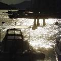 秋の光る海@瀬戸内海・新浜港