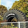 Photos: タイヤ工場のタイヤはデカイ(展示物)